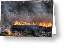 Fires Sunset Landscape Greeting Card