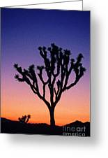 Joshua Tree With Special Effects Greeting Card