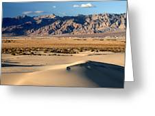 Mesquite Sand Dunes In Death Valley National Park Greeting Card