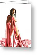 Neemah African American Nude Girl Photograph In Sexy Sensual Col Greeting Card