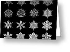 Snowflake Simulation Greeting Card