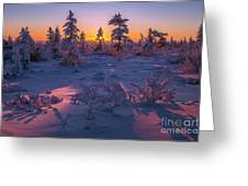 Winter Evening Landscape With Forest, Sunset And Cloudy Sky.  Greeting Card