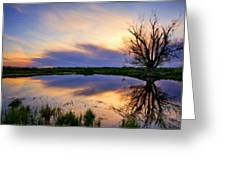 Landscape N More Greeting Card