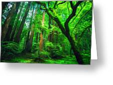 Nature Landscape Light Greeting Card