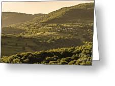Sunny Transcarpathia Greeting Card
