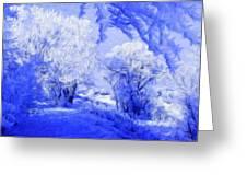 Nature Landscape Illumination Greeting Card