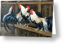 #69 - Roosters Greeting Card