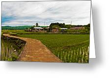 6x1 Philippines Number 123 Rice Fields Panorama Greeting Card