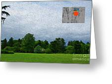 7-16-3057c Greeting Card