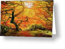 7 Abstract Japanese Maple Tree Greeting Card