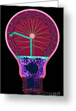 Energy Efficient Led Light, X-ray Greeting Card