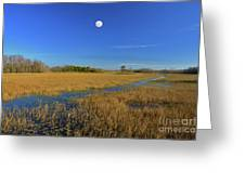 7- Everglades Moon Greeting Card