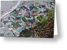 7. Ice Prismatics And Heather, Slaley Sand Quarry Greeting Card
