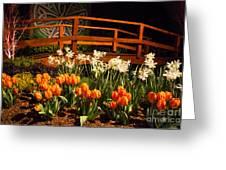 Imaginative Landscape Design Greeting Card