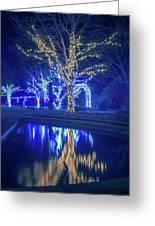 Lights, Christmas, Light, Christmas Tree, Green, Color, Red, Blu Greeting Card