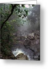 Misty Rainforest El Yunque Greeting Card