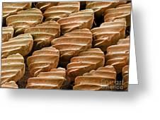 Sandbar Shark Skin, Sem Greeting Card