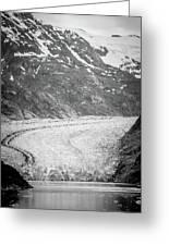 Sawyer Glacier In Tracy Arm Alaska Fjords Near Ketchikan Alaska Greeting Card