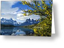 Springtime In Torres Del Paine Greeting Card