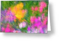 Summer Impression Series Panorama - Flowers Greeting Card by Ranjay Mitra