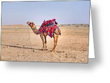 Thar Desert - India Greeting Card
