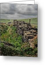 Rock Wall And Field In Ireland 7010199  Greeting Card
