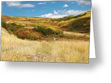 7797 Ranch Of Color Greeting Card