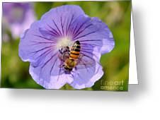 Blue Flower Greeting Card