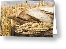 Bread And Wheat Cereal Crops. Greeting Card