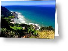 Cape Perpetua Greeting Card