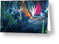 Christmas Season Decorationsafter Sunset At The Gardens Greeting Card