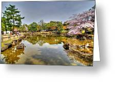 Nara Japan Greeting Card