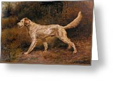 Osthaus Edmund Henry Commissioner A Champion English Setter Edmund Henry Osthaus Greeting Card