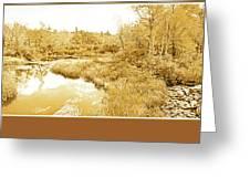 Stream In Autumn, Pocono Mountains, Pennsylvania Greeting Card