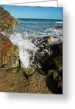Sunshine Beach At Noosa, Sunshine Coast Greeting Card