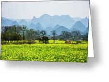 The Rape Flowers Field Scenery Greeting Card by Carl Ning