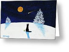 Winter Star Greeting Card
