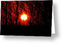 Sunsets Greeting Card
