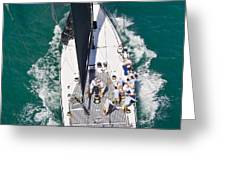 Key West Race Week Greeting Card