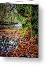 Harden Beck Greeting Card