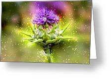 Silybum Eburneum Milk Thistle Greeting Card
