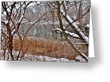 The Bass River In Winter Greeting Card