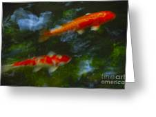 The Koi Pond Greeting Card