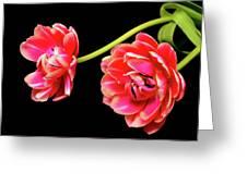 Tulip Floral Arrangement Greeting Card