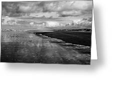 90 Mile Beach New Zealand Greeting Card