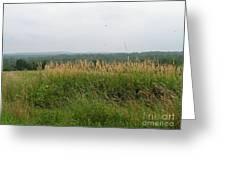 #940 D1096 Farmer Browns West Newbury Greeting Card
