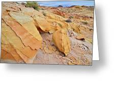 A Band Of Gold In Valley Of Fire Greeting Card