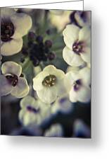 A Beautiful Bouquet  Greeting Card