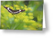 A Beautiful Swallowtail Butterfly On A Yellow Wild Flower Greeting Card