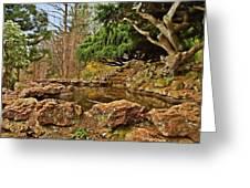 A Better Place - Deep Cut Gardens Greeting Card